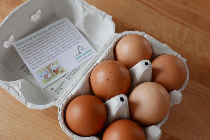 Weidehuhn-Eier: Hier gehts den Hühnern besonders gut