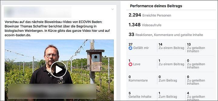 Facebook-Video als Beispiel: große Reichweite (bei rund 150 Followern)