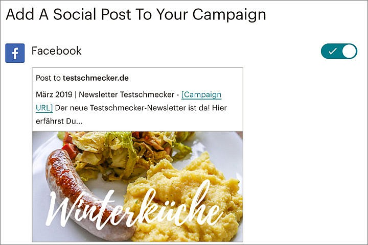 Du kannst Deinen Newsletter auch in Deinen Social Media Profilen veröffentlichen.
