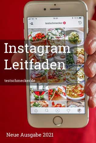 Instagram Leitfaden 2021