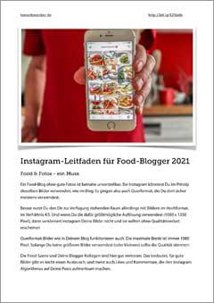Instagram Leitfaden 2021 als kostenloses PDF downloaden.