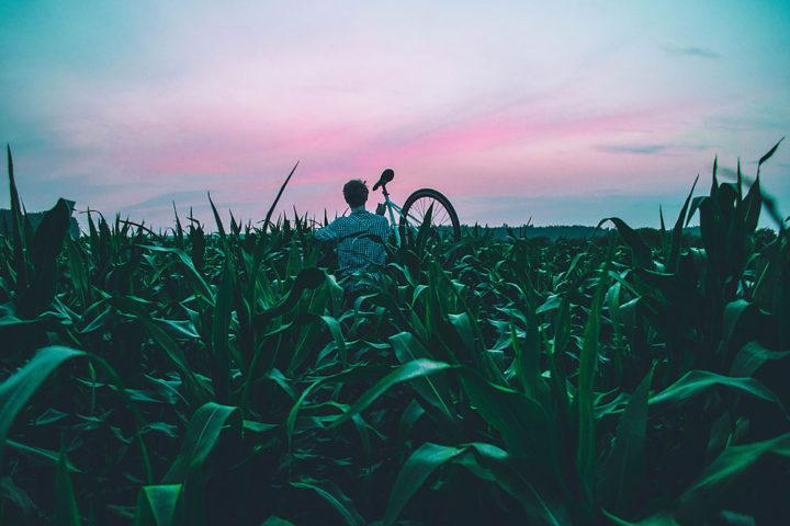 Welches Rad bringt mich in Sachen Fitness voran? Foto Sandis Helvigs, unsplash.com